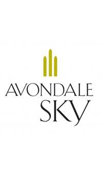 A product image for Avondale Sky Blanc de Noir