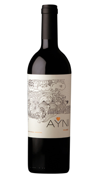 A product image for Chakana Ayni Malbec
