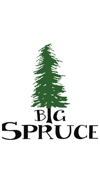 A product image for Big Spruce Tag You're It