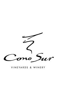 A product image for Cono Sur Merlot 1.5L