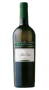 A product image for Masottina Pinot Grigio