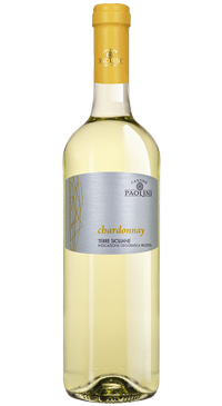 A product image for Cantine Paolini Zizza Chardonnay