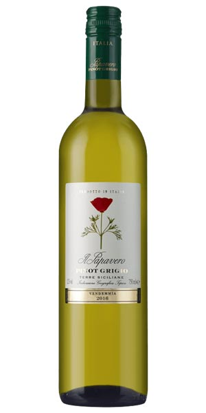 A product image for Il Papavero Pinot Grigio