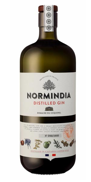 A product image for Normindia Gin