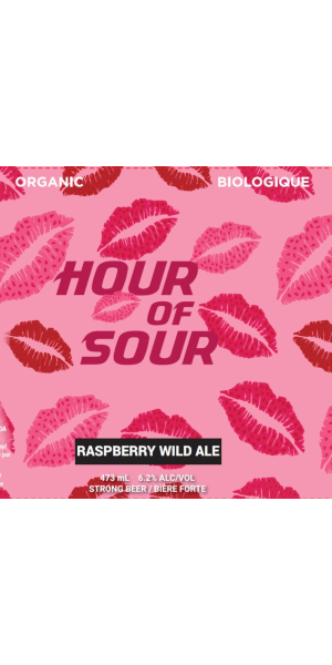 A product image for Big Spruce Hour of Sour – Raspberry Wild Ale